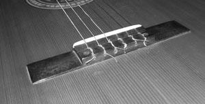 Acoustic Bridge